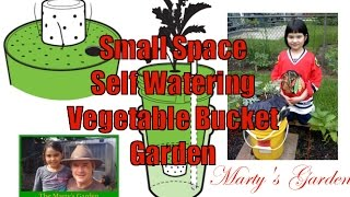 Diy Self Watering Small Space Vegetable Container Garden Project