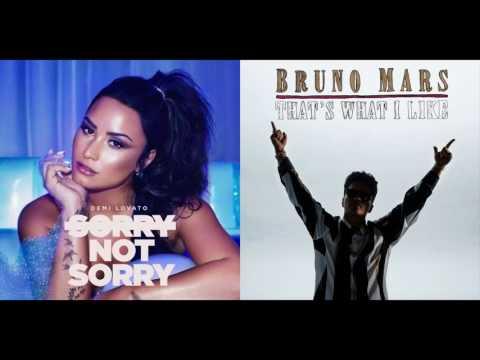 Sorry Not What I Like - Demi Lovato &...