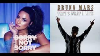 Sorry Not What I Like - Demi Lovato & Bruno Mars Mashup