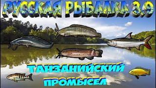 Русская рыбалка 3 9 Танзанийский промысел Мбамба Сом Маловийский