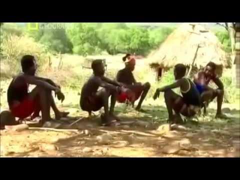 Сексуальная жизньдиких плем н