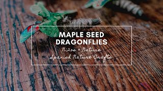 Maple Seed Libélulas - Spanish & Nature Crafts for Kids