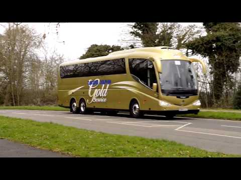 Bakers Dolphin: Experience the Gold Coach