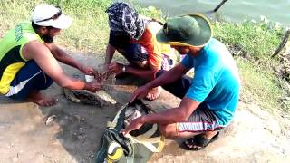 fishing in pakistan super sports kahna nau lahore  VIDEO0039