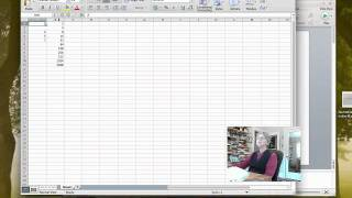 Finding Name Definitions in Excel 2011 for Mac.mp4