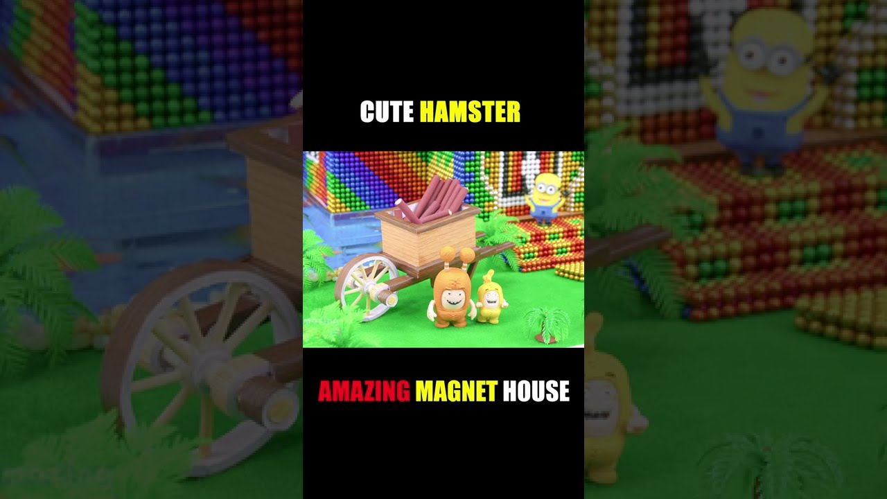 Amazing Magnet House With Cute Hamster #Shorts