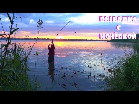 Рыбалка с Ночёвкой на дикой реке! Такого клева карпа на бойлы я в жизни не видел!