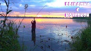 Рыбалка с Ночёвкой на дикой реке Такого клева карпа на бойлы я в жизни не видел