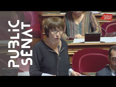 Paris: Amendement De Marie-Perre De La Gontrie Sur La Création D'une Police Municipale