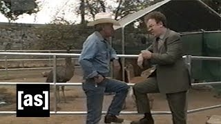 Sneak Peek: Horse   Check It Out! with Dr. Steve Brule   Adult Swim thumbnail