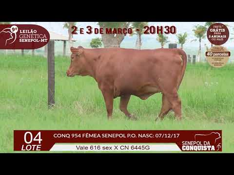 LOTE 04 CONQ 0954