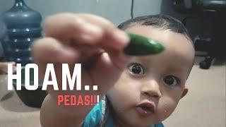 Bayi makan cabe rawit