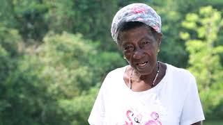 Historias de Vida Naturamazonas - Doña Sofia