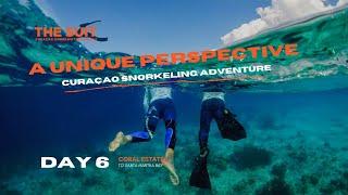 A unique Curaçao Snorkeling Adventure | Day 6 | The Suit Curacao Vlog