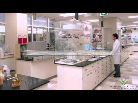 LONGVIDA Optimized Curcumin