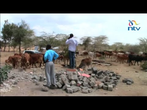 Nairobi politicians on the spot for using youth for land grabbing missions