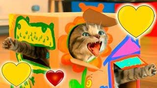 МОЙ МАЛЕНЬКИЙ КОТЕНОК #2 мультик игра как мультфильм для маленьких детей мальчиков и девочек