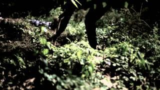 Sosa brown & Eddy Fresh   SurulereHD mp4