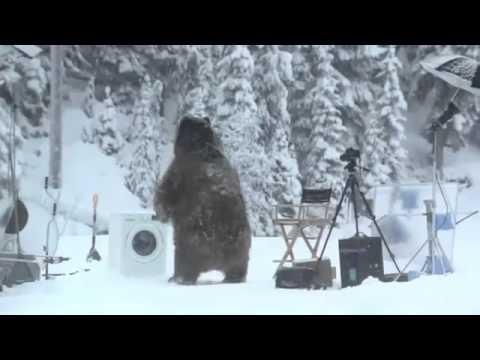 Bear Surprises Crew On Ecobubble Photo Shoot!