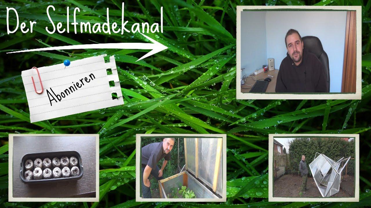 Gemüse Anbau 2016 und Gewinnspiel Artikelbild