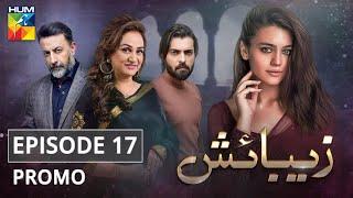 Zebaish Episode 17 Promo HUM TV Drama