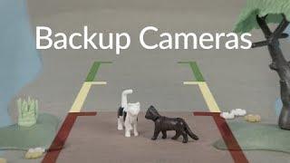 NVT   Backup Camera