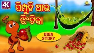 ପିମ୍ପୁଡି ଆଉ ଝିଂଟିକା | The Ant and the Grasshopper | Odia Story | Fairy Tales in Odia | Koo Koo TV