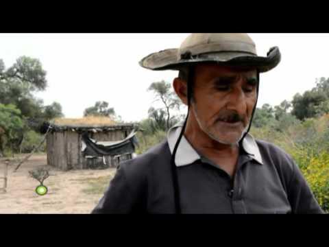EL IMPENETRABLE TV PARTE 2 26 09 15