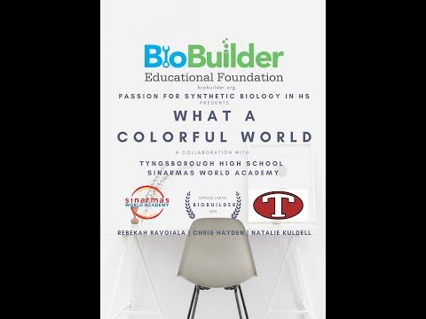 BioBuilder: Tyngsborough High School & Sinarmas World Academy Collaboration