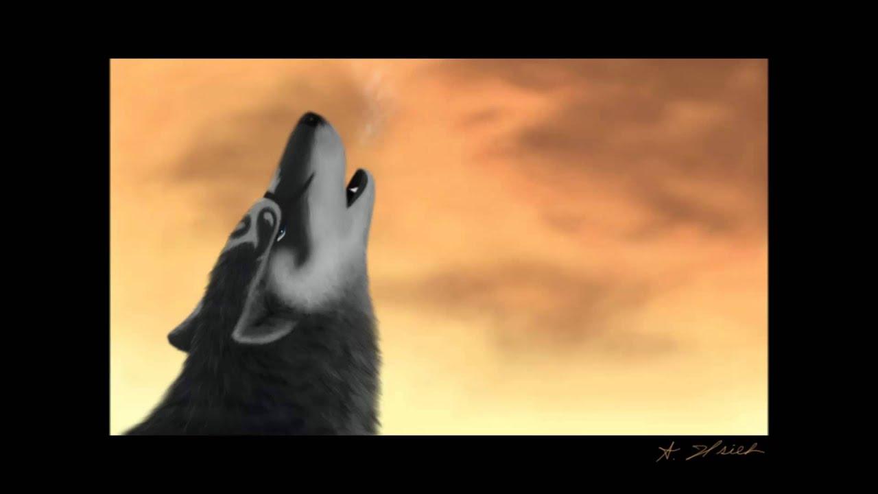 twilight princess wolf link songs youtube