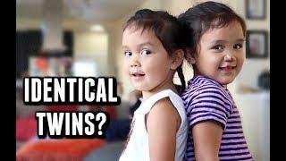Not so Identical Twins -  ItsJudysLife Vlogs