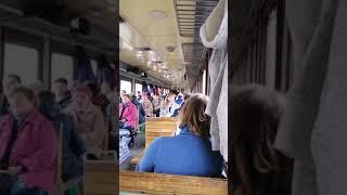 """Народное творчество по дороге в теплицу! Обожаю """"уличных"""" музыкантов!"""