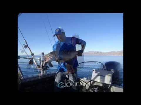 20 pound cutthroat trout pyramid lake
