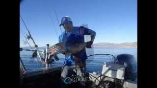 20 pound cutthroat trout pyramid lake