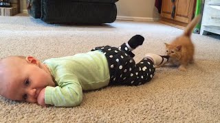 Baby and Cat Fun and Cute - Funny Baby Videos
