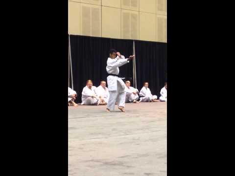 Demitrius Valdes National Testing Seminar, July 2014 Maywood, New Jersey Traditional Okinawan Karate
