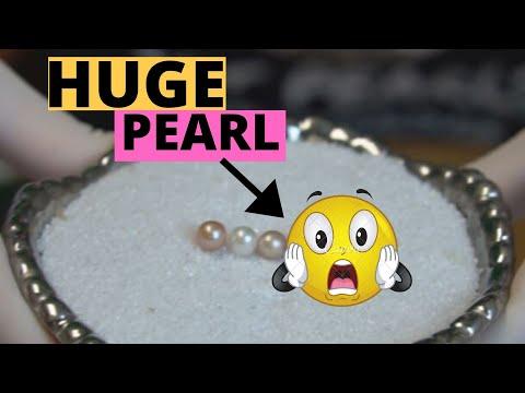 HUGE Pearl +