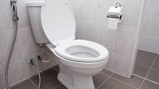 How To Fix a Leaking Toilet thumbnail