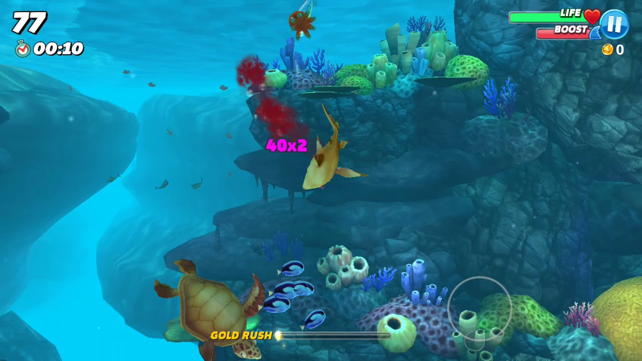 ฉลาม จู่โจม เกมสำหรับเด็กมันๆ shark attack