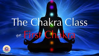 Introduction to the First Chakra