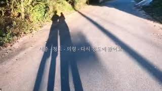 [세미워킹맘]추석연휴/브이로그/남편과산책/흔한시골풍경