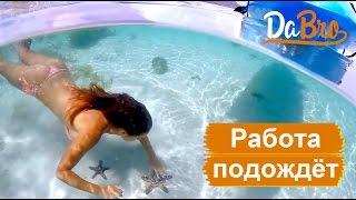 Смотреть клип Dabro - Работа Подождёт