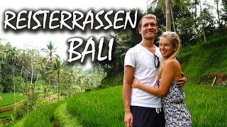 Die Tegalalang Reisterrassen 🌴 Wunderschönes Bali - Backpacking Indonesien | VLOG #99