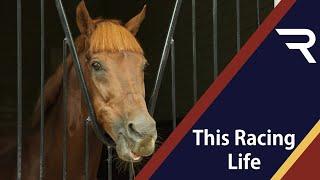 This Racing Life: A Selection Box - Racing TV