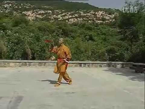 Shaolin kung fu twin knives 2