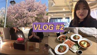 [Vlog] 5월 일상 모음집 [홈파티, 라라랜드, 삼…