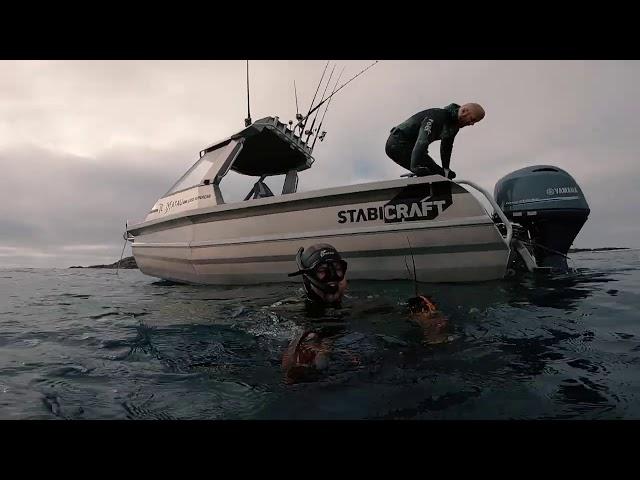 Stabicraft 1850 Supercab X1 - Rowan Hook Foveaux Strait Adventure Smorgasbord