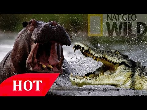 Monsters and Dinosaurs Triassic Age of Dinosaur Documentary Film HD