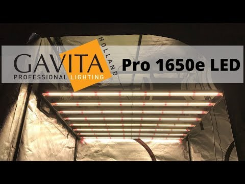 Gavita Pro 1650e LED Grow Light Product Spotlight - YouTube