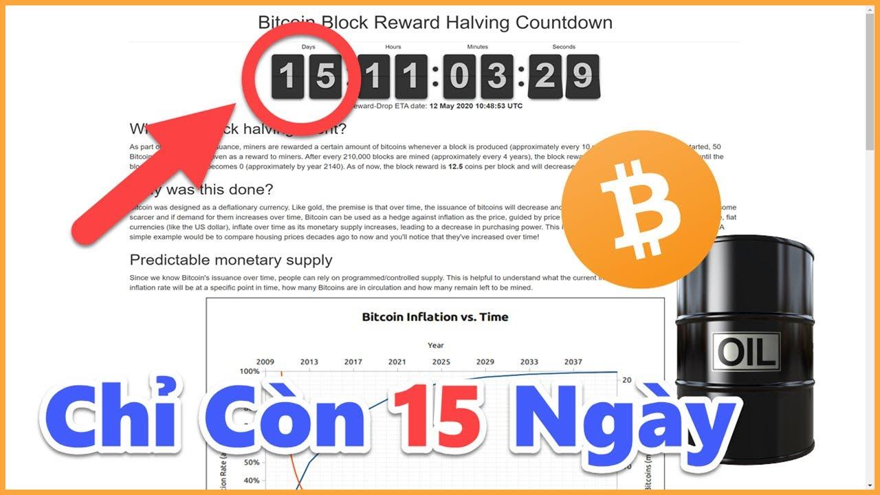 558 – Bàn Luận Về Bitcoin Halving / Giá Dầu Lại Xuống / Cập Nhật Thị Trường